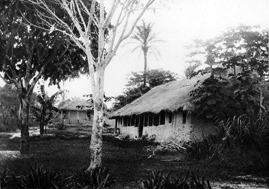 huts and trees in the Congo
